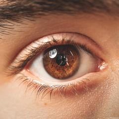 Autoportrait (Corentin.Photographie) Tags: brown selfportrait macro eye canon lens photography eos eyes photographie autoportrait 100mm february f28 ef 6d 2016 corentin cond gouchon