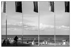 last days of summer  #530 (lynnb's snaps) Tags: 201603 leicaiiic manly bw film sydney beach summer cv35mmf28ltm fomadonlqn street flags bicycle ocean upgradetofilm analogphotography blackandwhite blackwhite bianconero noiretblanc monochrome