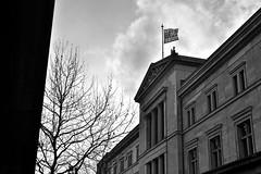 Museuminsel (-Fla-) Tags: sky tree berlin flag culture cielo albero cultura bandiera berlino museuminsel isoladeimusei