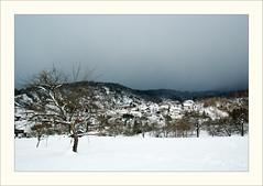 DSCF2990 (Frank Dpunkt) Tags: winter fujifilm murgtal sigma2418 s5pro