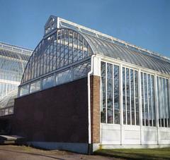 Växthus (rotabaga) Tags: 120 6x6 mediumformat göteborg lomo lomography sweden gothenburg sverige lubitel166 expiredfilm twinlens trädgårdsföreningen mellanformat