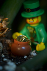 Pot of Gold (Alternate Focus) (s.kosoris) Tags: macro gold nikon lego minifig stpatricksday leprechaun minifigure potofgold series6 skosoris collectibleminifigures collectibleminifigs d3100 nikond3100