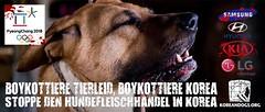 BOYKOTTIERE TIERLEID, BOYKOTTIERE KOREA (In German) (Koreandogs) Tags: samsung lg daewoo sk kia dogmeat southkorea hyundai boycott fila boshintang  animalcruelty  animalabuse koreanairline  asianaairline gaegogi     dogsoju dogelixir