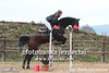 038P_403 (Lukas Krajicek) Tags: czechrepublic kon zeo koně humpolec parkur vysocinaregion michaelakadlecová