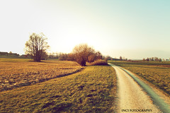 IMG_8649-vin2 (marcoinci85) Tags: red sun vintage fotografie natur free oldschool blau sonne baum bau wetter weg frhling kies fotographer
