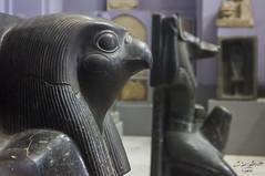 #2 (Tarek Ezzat) Tags: old museum canon eos egypt cairo egyptian m42 pharaoh horus dslr anubis  35105mm 600d  revuenon