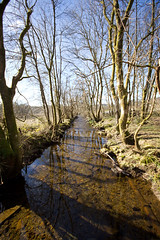 "Aberfoyle, Scotland (""Clare"") Tags: river landscape scotland stream aberfoyle"