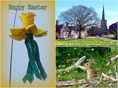 Easter Greetings (Deida 1) Tags: uk bunny easter cheshire staffordshire windsock astburyvillage daffodilwindsock