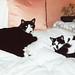Bhaji and Bhuna, Greenbank, 1999