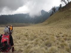 IMG_7264 (rijaalfa) Tags: park mountain lake national gunung taman bromo semeru tengger nasional ranu mahameru kumbolo