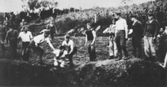 Ustae militia execute prisoners near the Jasenovac concentration camp between 1942-3 [2045 1073] #HistoryPorn #history #retro http://ift.tt/1MMHkzC (Histolines) Tags: camp history concentration near retro timeline militia execute between prisoners 2045 1073  vinatage 19423 jasenovac ustae historyporn histolines httpifttt1mmhkzc