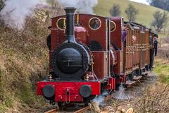 Dolgoch and Talyllyn, Talyllyn Railway (Explore) (babs pix) Tags: heritage snowdonia steamengine steamrailway narrowgauge brynglas talyllynrailway greatlittletrainsofwales fletcherjennings no2dolgoch no1talyllyn snowdoniamountainsandcoast tywyngwynedd cadaircountry
