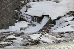 _1190363.jpg (Bucky-D) Tags: ca canada mountains rockies alberta banff bowriver bowfalls banffnationalpark canadianrockies fz1000