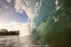 IMG_0358 copy (Aaron Lynton) Tags: beach canon big barrel wave 7d spl makena shorebreak lyntonproductions