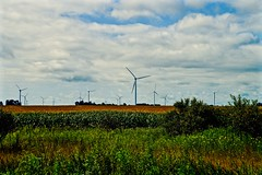 Wind Farm - Wolcott Indiana (Meridith112) Tags: summer sky cloud windmill clouds corn cornfield nikon midwest lafayette indiana august bluesky i65 wolcott in windturbines 2015 bentoncounty northwestindiana nikon2485 bentoncountywindfarm fowlerridgewindfarm nikond610 marker195