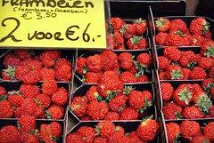 20160408 (40)1 (cappion-jays) Tags: red fruits strawberries denhaag thehague