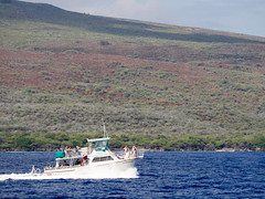 dominion (dolanh) Tags: cruise hawaii boat maui lanai pacificwhalefoundation snorkelcruise