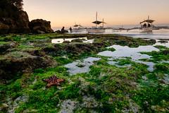 Morning sunrise with algae (Hendraxu) Tags: morning summer sun green beach water sunrise lens dawn boat fuji fujifilm kit algae boatman xm1
