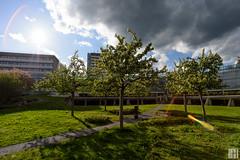 spring in hospital garden (gregor H) Tags: garden feldkirch sterreich spring vorarlberg landeskrankenhaus at