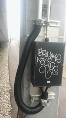 Daylight (.voyageur.) Tags: vienna wien graffiti austria sterreich tag brume handstyle nalide