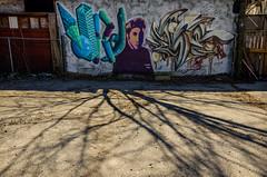 Psychedelvis (JeffStewartPhotos) Tags: toronto ontario canada mural grafitti elvis sandwich banana photowalk presley peanutbutter parkdale peanutbutterandbanana torontophotowalk topw torontophotowalks topwpkdl