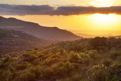 Sunrise Over Mount Hay || BLUE MOUNTAINS || AUSTRALIA (rhyspope) Tags: new blue mountain pope mountains weather wales sunrise canon landscape mt view south australia mount valley nsw vista 5d hay aussie rhys mkii leura rhyspope