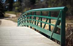 The Bridge to Bokeh (Don Arsenault) Tags: scenery bokeh albertacanada camrose canoneos5dmarkii canonef85f12liiusm donarsenault