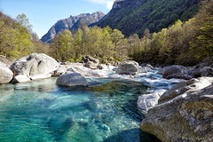 Wild Verzasca Valley (PaulGsell) Tags: trees mountains cold water forest river landscape schweiz switzerland tessin ticino woods rocks wasser stones berge clear steine valley fluss kalt landschaft wald bume tal felsen verzasca klares