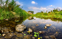 Small river at another country (WatChRa) Tags: autumn sunset summer sky sun mountain plant motion color tree green nature water ecology beautiful beauty forest river landscape outdoors leaf spring stream natural outdoor background nobody scene fresh land environment flowing freshness