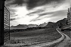 Il Sentiero (johnn.claudio4780) Tags: blackandwhite landscapes belluno dolomiti biancoenero castion canon700d paesemontagna
