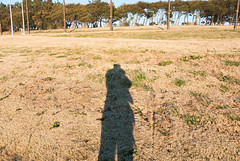 Untitled (Naoto Yanagisawa) Tags: shadow me japan tokyo lawn koto kotoku koutou koutouku wakasu wakasupark