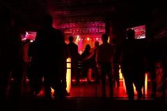 176/365 Enjoying Elton at the Harman party