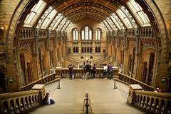 Natural History Museum (Future-Echoes) Tags: roof people london museum hall steps pillars naturalhistorymuseum 2015 hintzehall