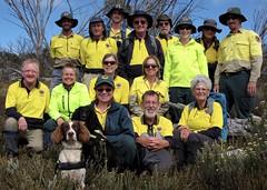 Hawkweed Team Week 1 (Environment + Heritage NSW) Tags: weed or volunteers volunteer kosciuszko kosciuszkonationalpark orangehawkweed volunteerprogram weedcontrol huntinghawkweed orangehawkweedcontrolprogram weedprogram hawkweederadiction