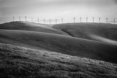 windmill-6 (Xiaoming Chen) Tags: california windmill sunrise landscape hill livermore