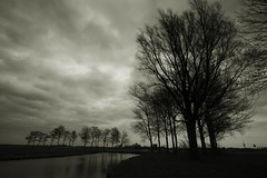 Moving twigs (M a u r i c e) Tags: trees blackandwhite bw water netherlands monochrome clouds wind cloudy branches wideangle polder twigs efs1022mm ultrawidezoom
