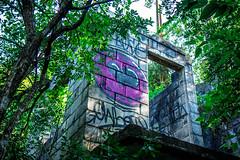 (wolfartf) Tags: park pink parque brazil verde green abandoned sol paran construction paint day heart natureza saturday rosa sunny curitiba corao sbado abandonado tangu construo