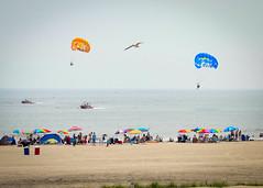 blowin in the Wind (Daveyal_photostream) Tags: ocean people beach photoshop boats sand nikon wind outdoor seagull crowd highkey umbrellas seashore beachtowels nikor parisail d7000 mygearandme meandmygear soniagallery