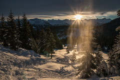 Let It Snow (Explored) (Markus Trienke) Tags: morning trees winter sun mountain mountains cold tree ice sunrise canon de landscape bayern deutschland eos frozen allgu nebelhorn oberallgu 70d obermaiselstein