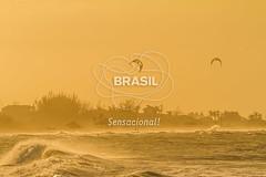 NE_DeltaParnaiba0397 (Visit Brasil) Tags: pordosol praia horizontal brasil natureza céu kitesurf árvore esporte nordeste ecoturismo vegetação piauí externa paraquedas silhuetas luiscorrea comgente diurna praiadoscoqueiros brasil|nordeste brasil|nordeste|piauí|luiscorrea brasil|nordeste|piauí|luiscorrea|praiadoscoqueiros quisoquecabana brasil|nordeste|piauí