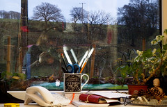 Relentless Optimism - winter in Calder Vale (vintage vix - Everything is a miracle) Tags: reflection window ceramic houseplant buddha telephone mug windowsill ironingboard stokescroft caldervale