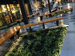 Public space at the Amazon building (Seattle Department of Transportation) Tags: seattle plaza public bench amazon space transportation seating twitter sdot donghochang