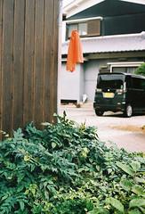 orange towel (longan eyes) Tags: orange film japan towel f18 50mmf18ii canonelan7e yamanobenomichi fujisuperiapremium400