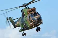 French Army SA330 Puma helicopter at ALAT 60th anniversary Airshow, Le Luc 2014 (Andr Bour) Tags: helicopter puma ll14 alat sa330