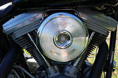 1999 Harley-Davidson FXST chrome (crusaderstgeorge) Tags: 1999 harleydavidson hd chromed fxst screamineagle 1999harleydavidsonfxst