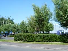 SC6-173 - Dawnfresh, Uddingston - smoking shelter (Droigheann) Tags: udd