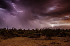 In Harm's Way (sdacosta85) Tags: arizona weather nikon desert monsoon thunderstorm lightning duststorm sonorandesert superstitionwilderness d610 tontonationalforest haboob peraltatrail northamericanmonsoon