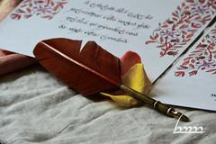 Narqelion (Iceman_ic400) Tags: calligraphy tolkien middleearth thelordoftherings mechkivskiy mechkivskiyart tolkiencalligraphy manuscriptardalibrary manuscriptardalibraryproject