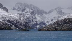 DSC03294 (peng_tim1) Tags: ice georgia south antarctica antarctic sd georgien anartikis