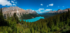 Peyto Lake (peter.beutler1) Tags: lake canada see peytolake